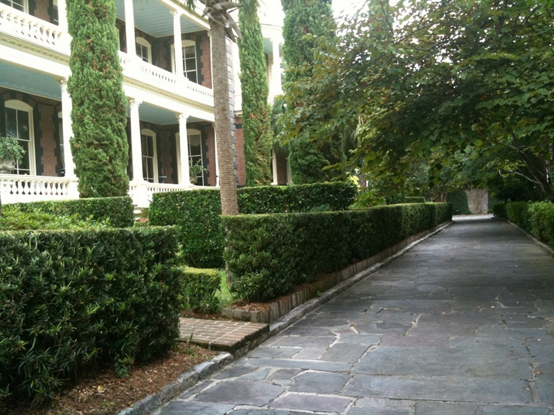 The Hedge A Classical Garden Element