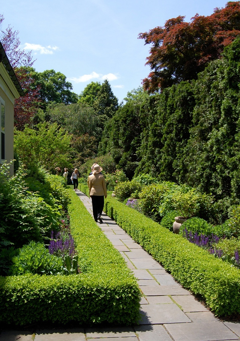 The hedge a classical garden element for Landscape gardeners