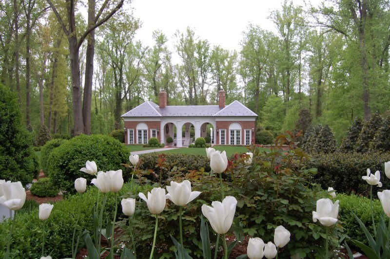 tulips and pool house