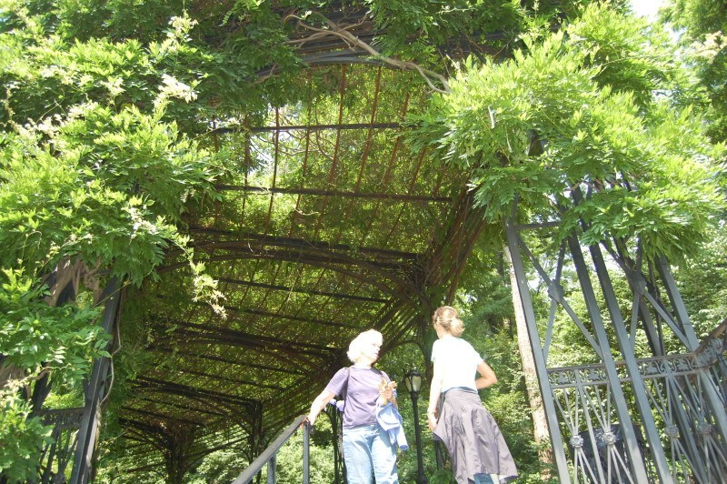 L and A under arbor