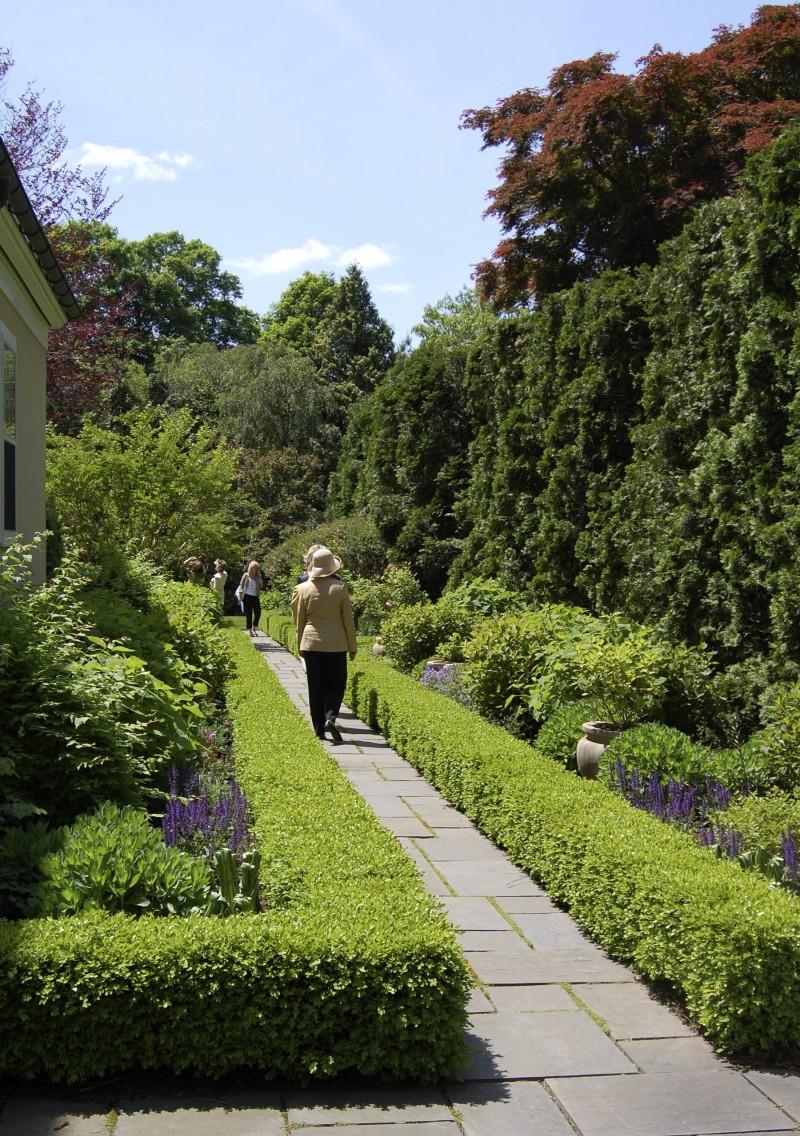 hedged walk