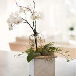 stone-planters-150×150